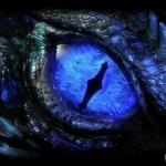 Bluedragon%s's Photo